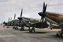 Line up of spitfires at Waddington Airshow 2010