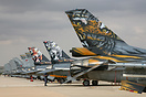 Line up of F-16 Tiger tails from various European Air force's during N...