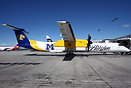 "Horizon Air's ""Montana State University Bobcats"" scheme."