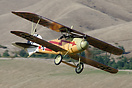 Kermit Weeks flying display in his Albatros D.Va ZK-TBB at Classic Fig...
