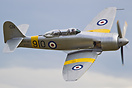 A Royal Navy Sea Fury makes a spectacular low-pass at Flying Legends 2...