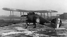 The Sopwith Dragon was a British single-seat fighter biplane developed...
