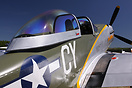 Titan T-51 Mustang G-TSIM is a 3/4-scale replica of the P-51 Mustang, ...