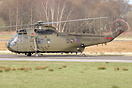 Two Sea Kings and three Chinooks airlifted some 600 British and French...