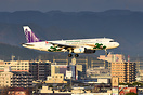 Low cost carrier HK Express special scheme promoting Takamatsu, one of...
