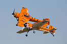 Twin Tiger Aerobatic Team