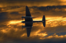 The mosquito flying overhead at the golden hour with the sky filled wi...