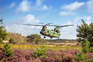Dutch Chinook picking up a sling load on the Dutch heath