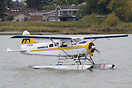 A Harbour Air Beaver floating on the water after landing